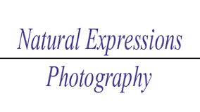 Natural Expressions Photography